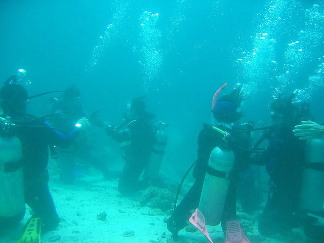 The thrill and excitement of the Maduro dive packages
