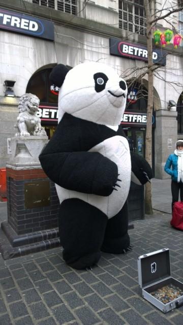 Panda in Chinatown