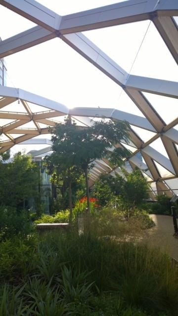 Canary Wharf garden