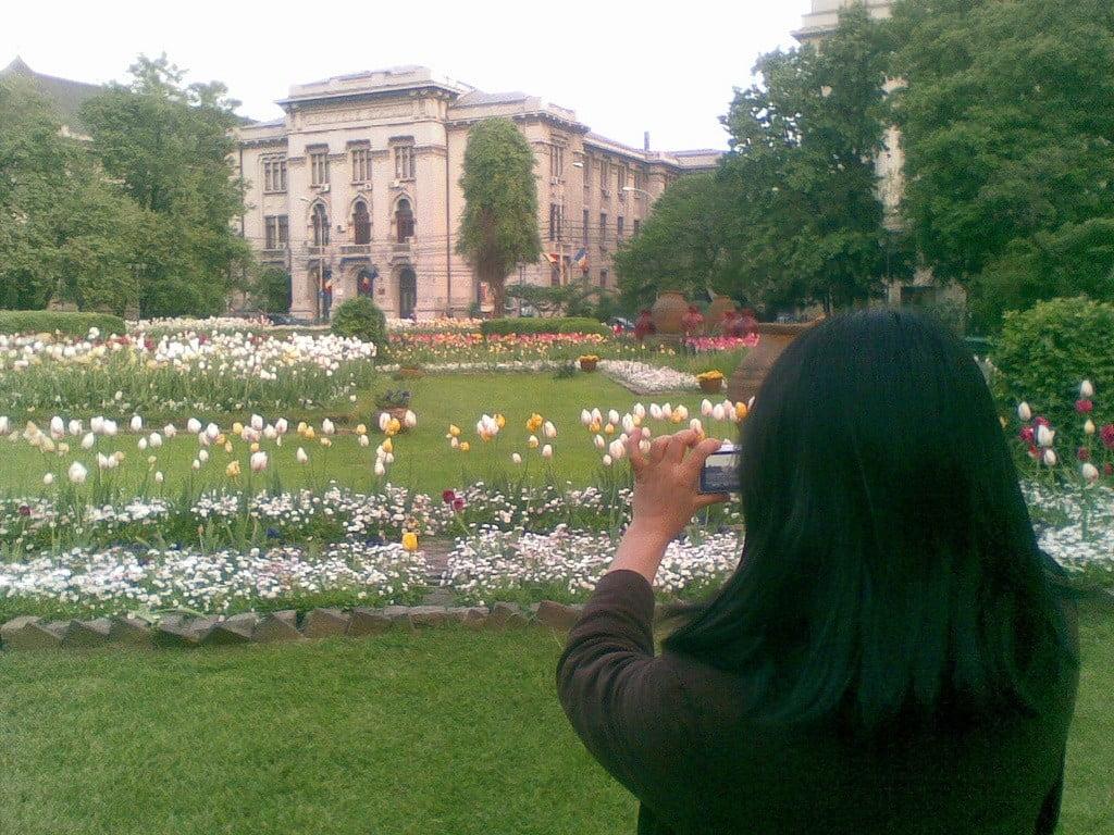 Cișmigiu Gardens photo