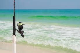 The Top Clearwater Beach Fishing Charters You Should Consider