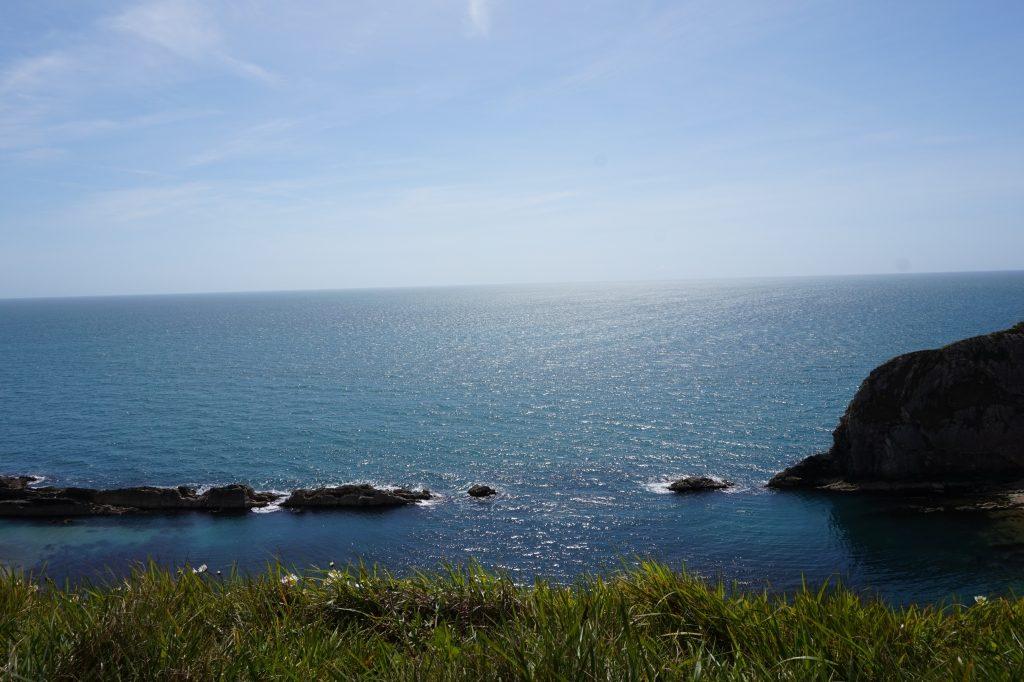 Jurassic Coast in One Day: Durdle Door, Weymouth & West Bay 5