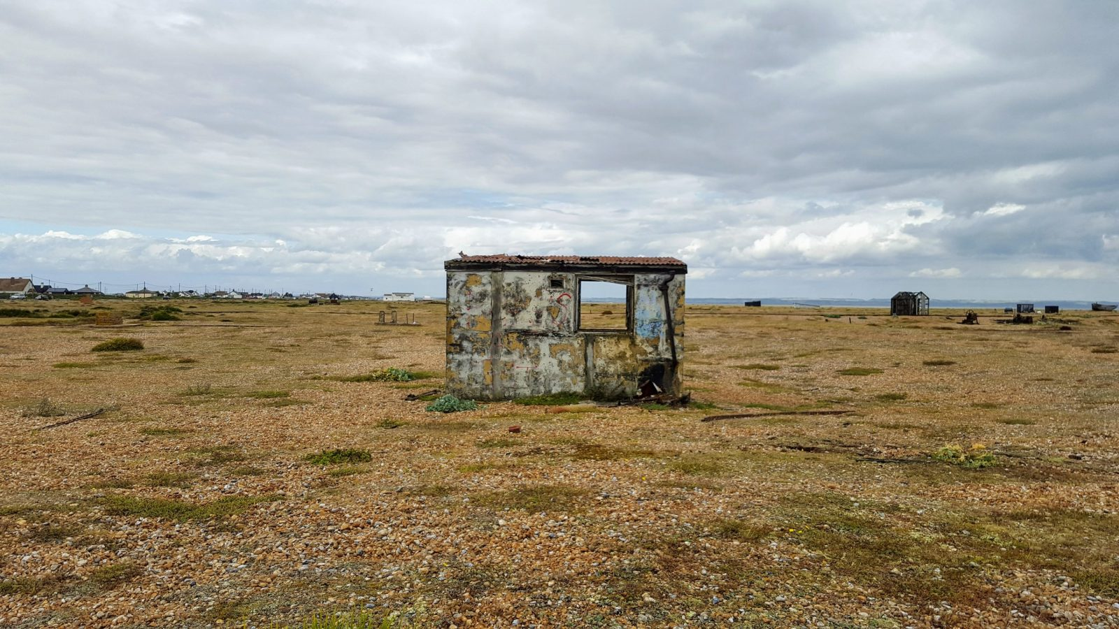 Things to do in Dungeness: Photo Essay 13