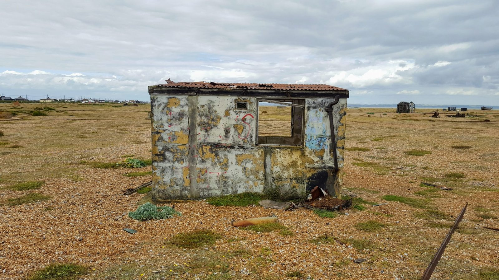 Things to do in Dungeness: Photo Essay 14