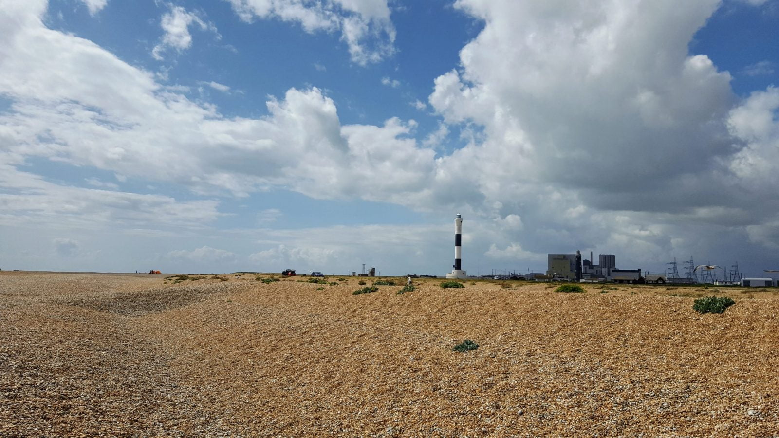 Things to do in Dungeness: Photo Essay 30