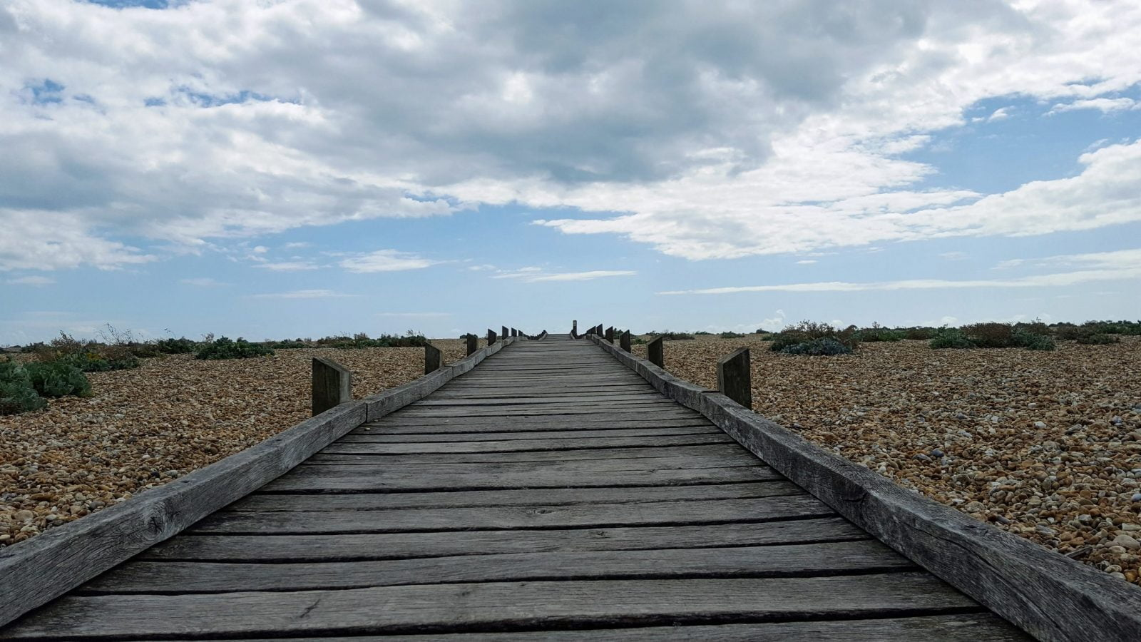 Things to do in Dungeness: Photo Essay 21