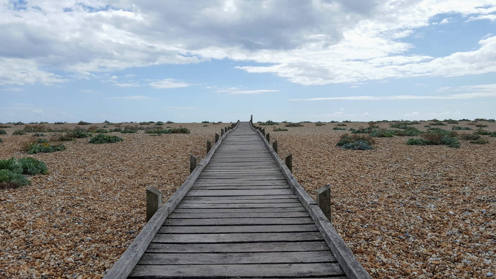 Things to do in Dungeness: Photo Essay 20