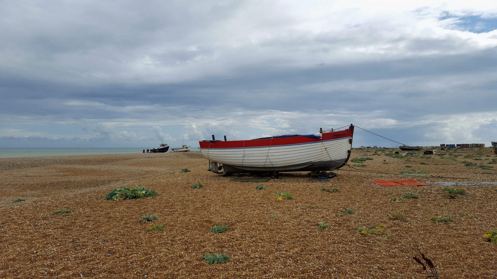 Things to do in Dungeness: Photo Essay 27