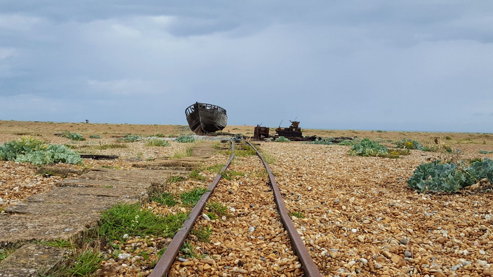 Things to do in Dungeness: Photo Essay 16