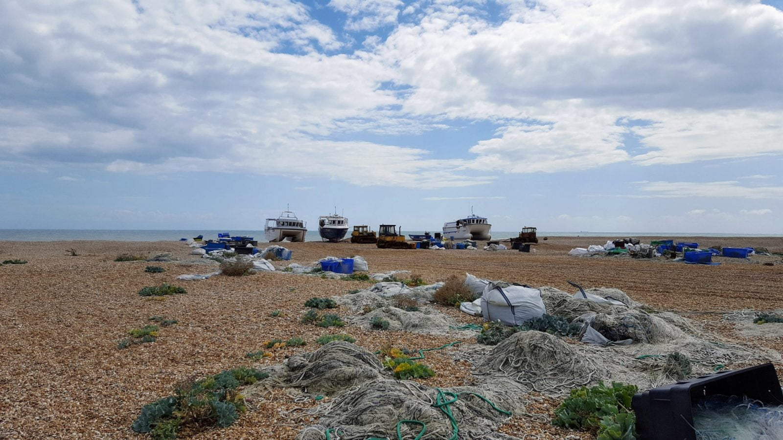 Things to do in Dungeness: Photo Essay 28
