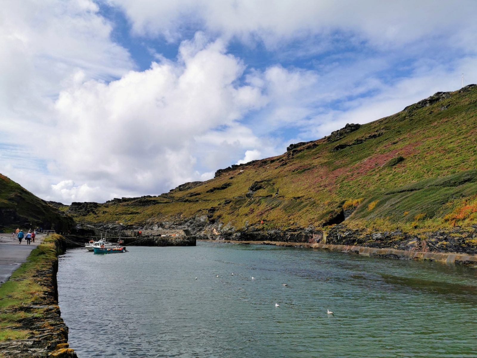 Boscastle Harbour: Photo Gallery 15